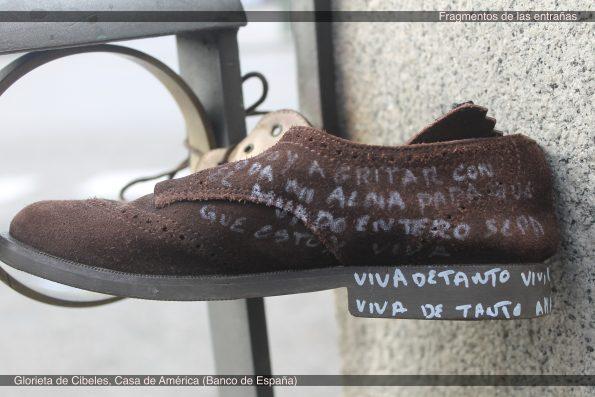 7 Zapato