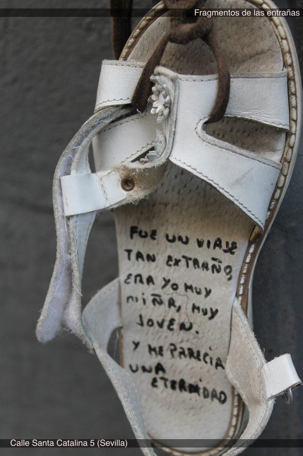 8 Zapato